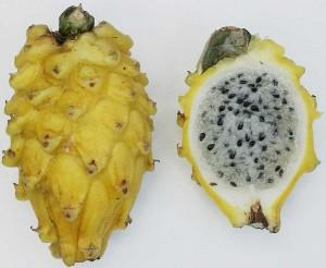 800px-Yellow_pitaya